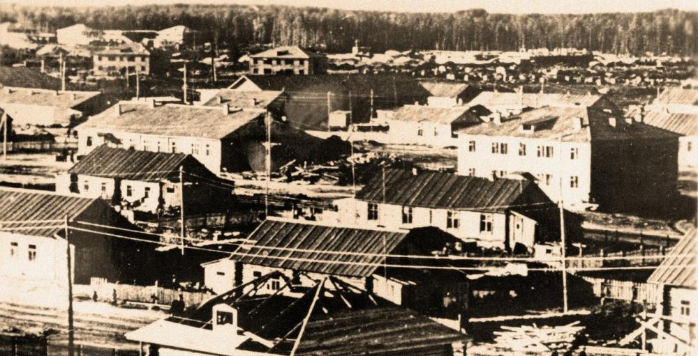 архивные фотографии сургутского района гербера саду
